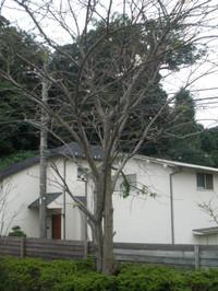 20111021_007_2